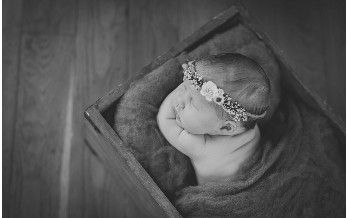 Newport Newborn Photographer - Poppy